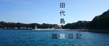 tashirojimazenkei.jpg